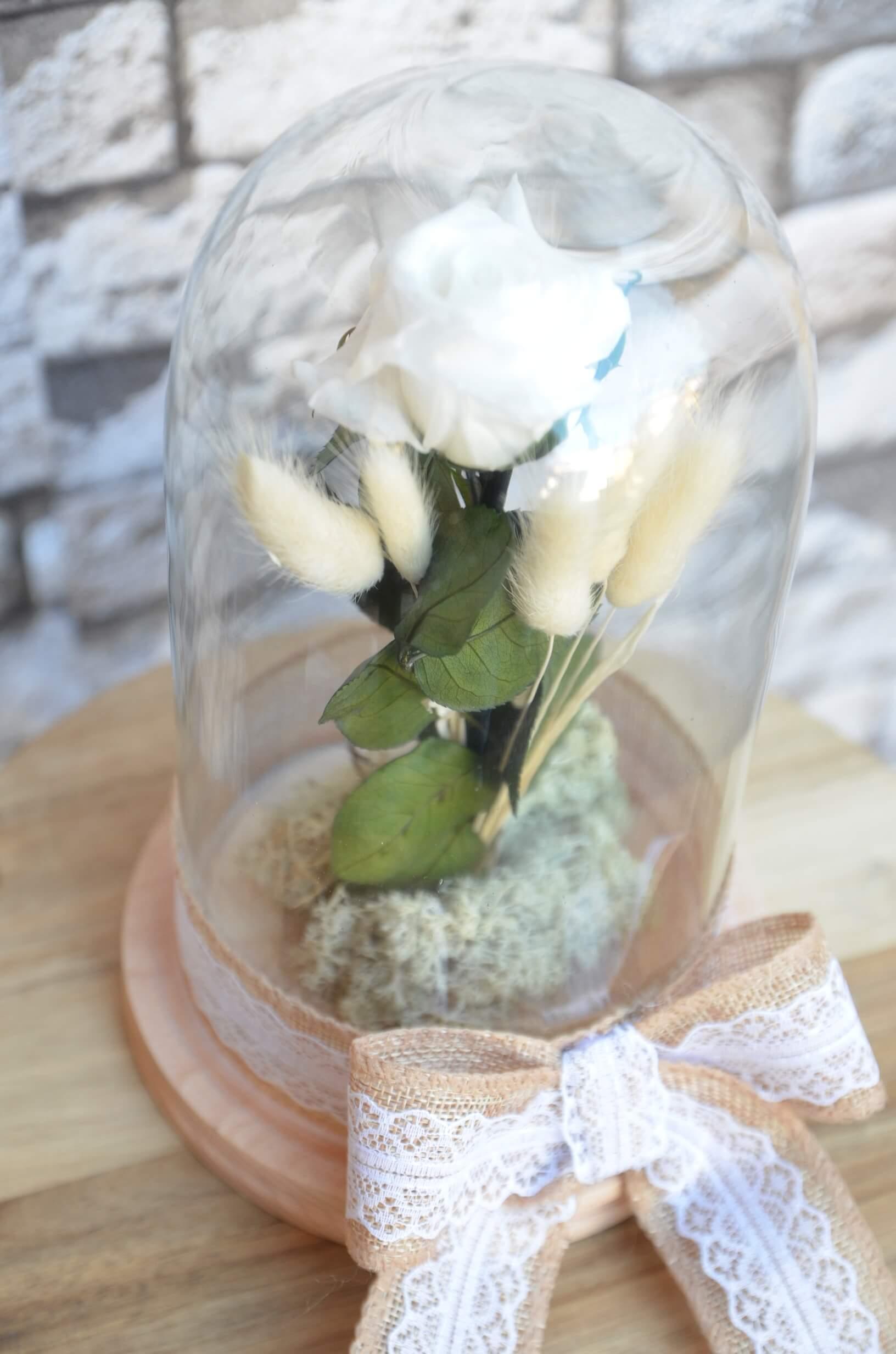 Florarii Online cu Trandafiri Criogenati – Un nou trend